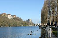 Sentier des Saules à Genève près du Rhône face au Jet d'eau